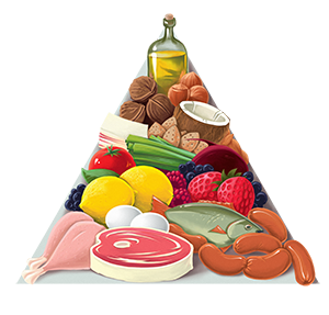 YOUR GUIDE TO PALEO REVIEWS PALEO NUTRITION