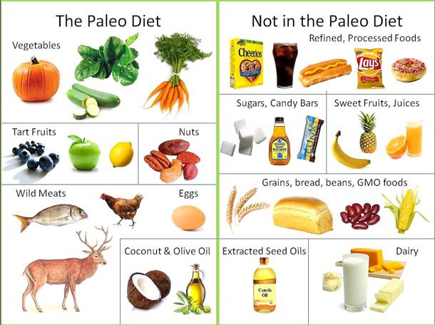 paleo lifestyle diet meal plan